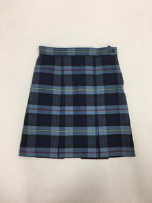 Skirt plaid