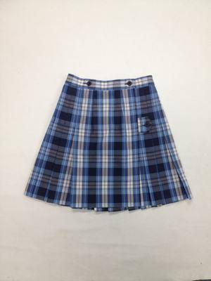 Skirt plaid