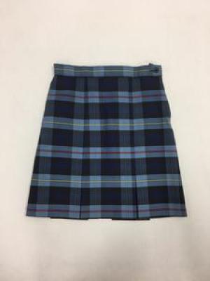 Skirt plaid 41